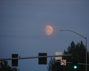 Giant moon over Soldotna