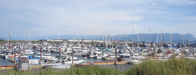 Homer marina (still crowded, even in September)