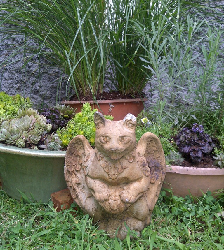 The fearsome 'catgoyle' guarding my little garden
